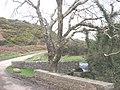 St Beuno's Pool, Pistyll - geograph.org.uk - 634692.jpg
