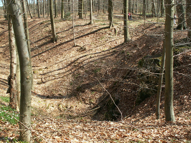 There are several sinkholes in the higher parts of the state forest Hohnbachtal near Kelmis which are signs of underground karst phenomena. These take place in the hard but slightly soluble limestone. In this region it is called Blaustein (blue stone).
