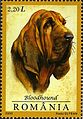 Stamps of Romania, 2005-092.jpg