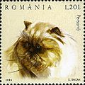 Stamps of Romania, 2006-005.jpg
