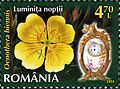 Stamps of Romania, 2013-51.jpg