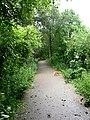 Start of Kirklees Trail, Greenmount - geograph.org.uk - 469962.jpg