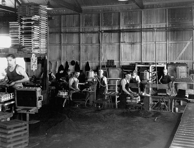 StateLibQld 1 53860 Workers in the Munitions Factory at Ipswich, ca. 1942