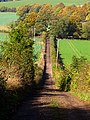 Steep incline along the Byway - geograph.org.uk - 71397.jpg