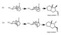 Stereochem of aza cope.tiff