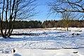 Stierstädter Heide Winter.jpg