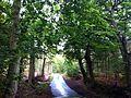 Stratfield Mortimer RG7, UK - panoramio.jpg