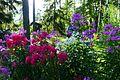 Summer Cottage (7859307966).jpg