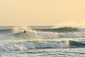 Surfing during the South swell (8933633676).jpg