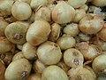 Sweet onions in a pile.jpg