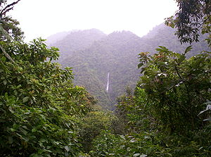 Tapantí National Park - Waterfall seen from the visitor observatory