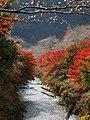 Tashiro-gawa River, Semmi-cho Toyota 2016.jpg