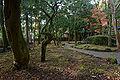 Tatsuno Shuentei15bs4592.jpg