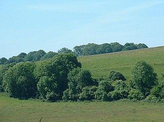 Worthing Downland Estate - Image: Tenants Hill geograph.org.uk 20015