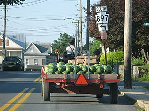 Terre Hill, Pennsylvania - Watermelons on their way to a farmers market, near the intersection of Sweigart Street and Pennsylvania Route 897.