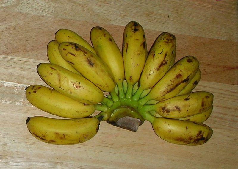 File: Thai banane di Kamphaeng phet87.jpg