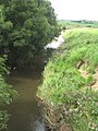 The River Neet - geograph.org.uk - 1450964.jpg