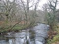 The River Teign in winter - geograph.org.uk - 1116495.jpg