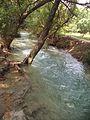 The rushing stream of kanhatti garden.jpg