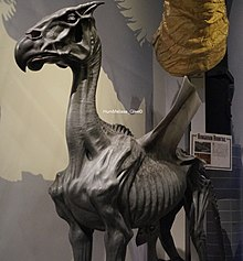 Thestral (The Making of Harry Potter).jpg