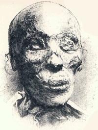 The mummified head of Thutmose II