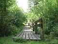 Tiltas Žalgirio miške.jpg