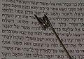Torah yad.jpg