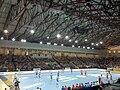 Torwar Handball Poland Croatia1.jpg
