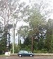 Toyota Starlet (8631584998).jpg