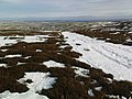 Track on the Moor - geograph.org.uk - 1165541.jpg