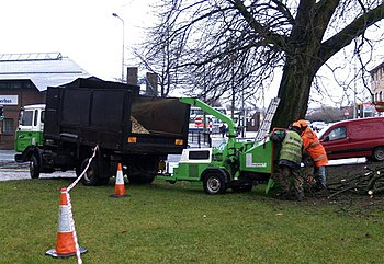 English: Tree Surgery, Omagh All the smaller b...