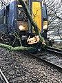 Trees blocking the railway line.jpg