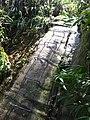 Trilha Pedra Riscada - Escada - panoramio.jpg