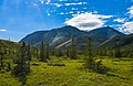 Tundra landscape with trees, clouds, mountains and lens flare, Ivvavik National Park, YT.jpg