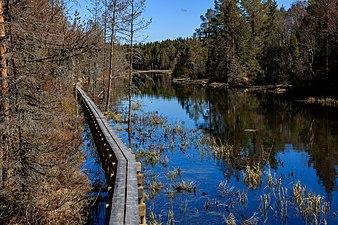 Tysjöarnas naturreservet 170513 01.jpg