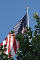 US Flag (2312889185).jpg
