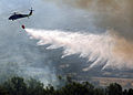 US Navy 071023-N-3069F-006 An MH-60S Seahawk assigned to Helicopter Sea Combat Squadron (HSC) 85, dumps water from a full 420-gallon extinguishing trough onto of one of the many areas in San Diego County suffering from an ongoi.jpg