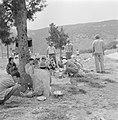 Uitstapje van jeugd uit een kibboets Een groepje jongeren in de schaduw van een, Bestanddeelnr 255-4490.jpg
