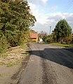 Ulica Leśna w Radziechowach.jpg