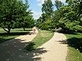 University Parks, Oxford - geograph.org.uk - 201522.jpg