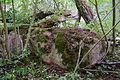 Võhksa ohvrikivi ehk Nõiakivi (foto nr 2).JPG