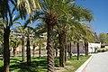 VIEW , ®'s - DiDi - RM - Ð 6K - ┼ , MADRID PARQUE de PEÑUELAS JARDÍN - panoramio (167).jpg