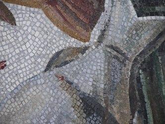Vatican Museum mosaic closeup.jpg
