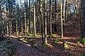 Velden am Wörther See Köstenberg Wanderweg zur Burgruine Hohenwart 08112018 5297.jpg
