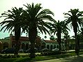 Venice Florida.jpg