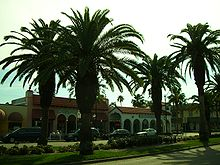 Downtown Venice (West Venice Avenue)