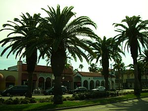 Venice, Florida - Downtown Venice (West Venice Avenue)