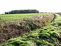 View along a curving ditch - geograph.org.uk - 1596482.jpg