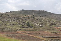 View from Tel Shiloh IMG 3016.JPG