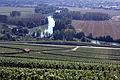 Vigne Pinot noir (Vue sur la Marne) Cl.J.Weber11 JPG. (23677694445).jpg